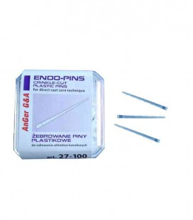 Endo-Pins piny plastikowe 100 szt