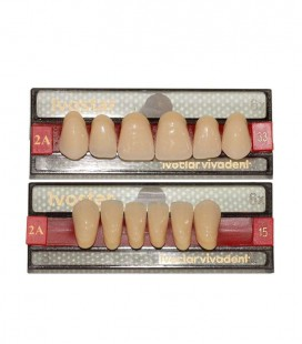 Zęby Ivostar według kolornika A-D