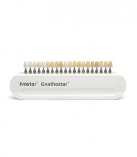 Kolornik A-D do zębów Ivostar, Gnathostar