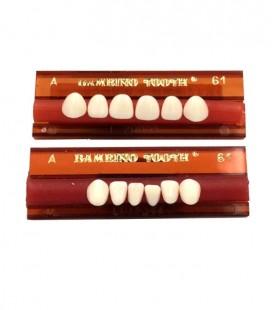 Zęby Major Bambino Tooth płytka przody 6 szt.