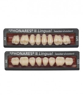 Zęby SR Phonares II Lingual 8 sztuk