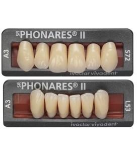 Zęby SR Phonares II Anterior 6 sztuk